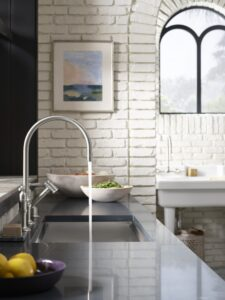 silestone-trendspotter-cheryl-kees-clendenons-greenhouse-kitchen_16